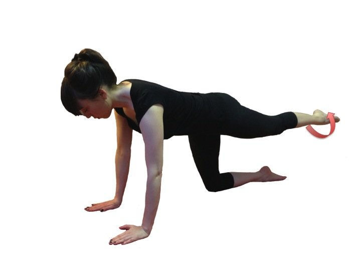 Quadriped Hip Extension With Rotation