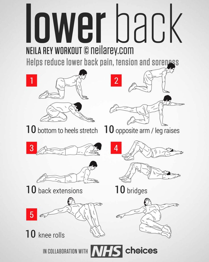 5 Best Lower Back Exercises