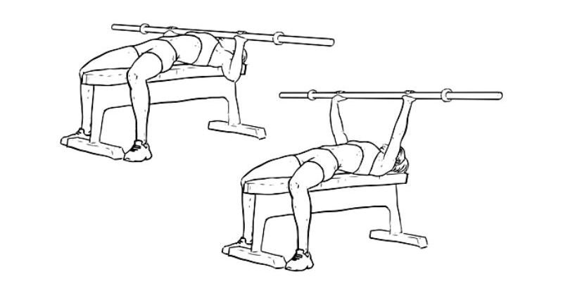 Workout For Females - Bench Press