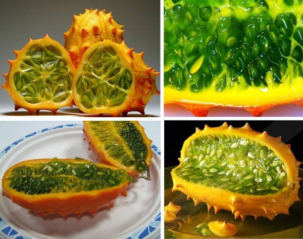 exotic fruit kiwano