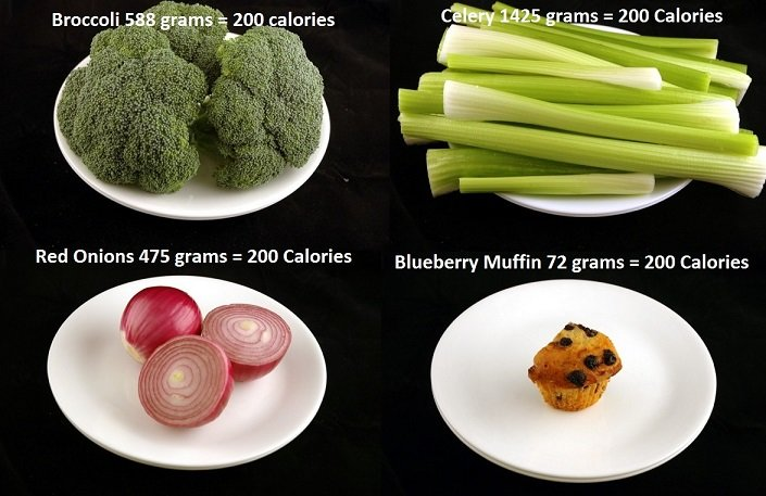 This-Is-What-200-Calories-Looks-Like 4
