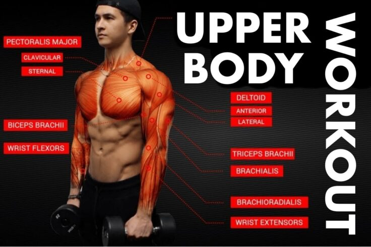 The Best Upper Body Workouts