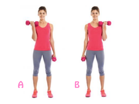 Standing alternate dumbbell curls