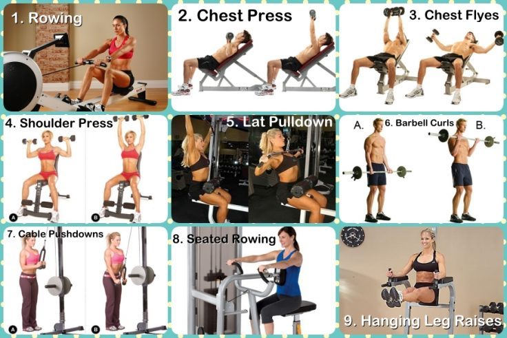 Upper Body Gym Routine