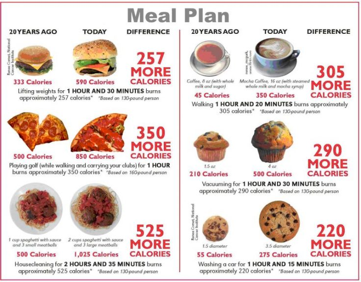 Meal Plan Nowadays