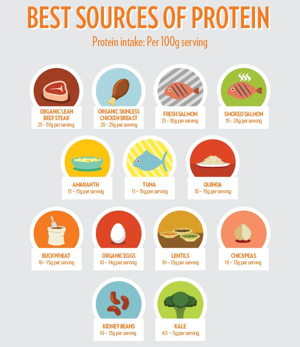 Top 10 Protein Sources