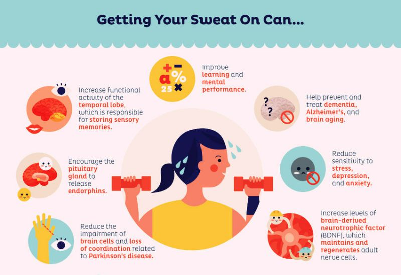 Your-Brain-On-Exercise.jpg