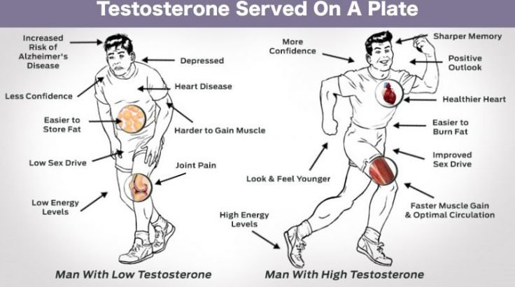 Testosterone served on a plate