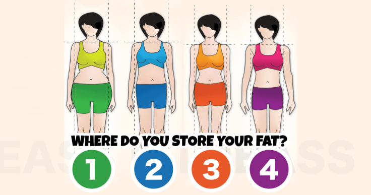 The 4 Main Body Types-FB