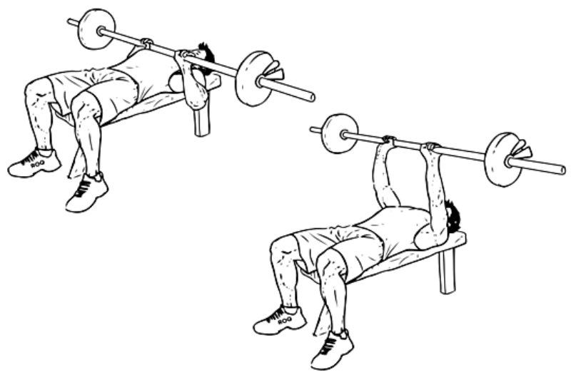 narrow grip bench presses