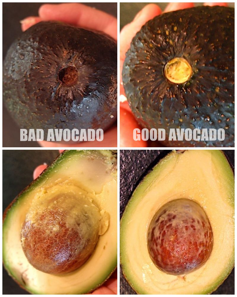 Life Hacks - Bad Avocado Test