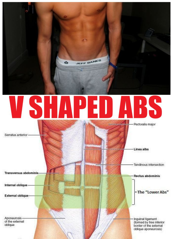 V Shaped Abs Workout