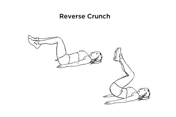 V cut abs - reverse crunch