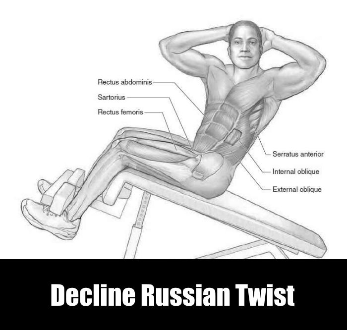 Decline Russian Twist for V Abs