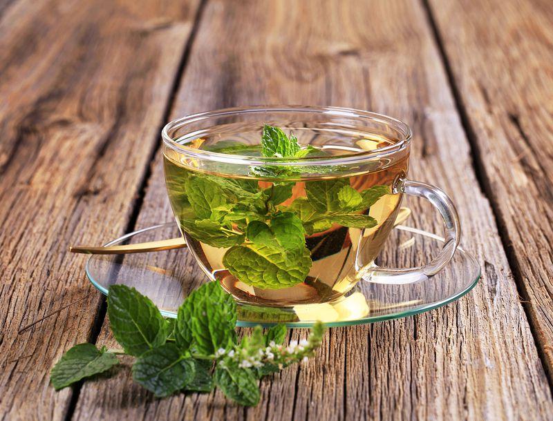 Mint Tea - Nutritional Drinks