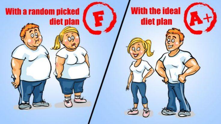 The Diet Quiz