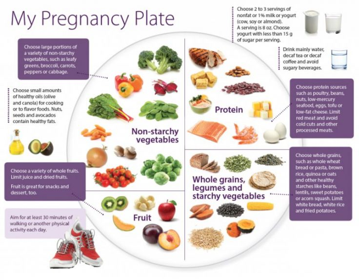 Healthy Pregnancy Plate