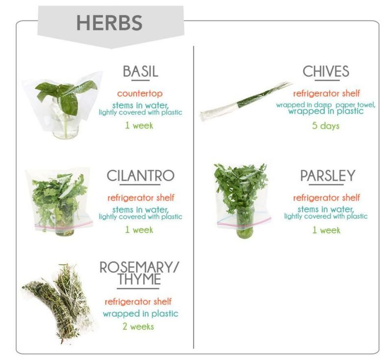 How To Store Groceries - Herbs