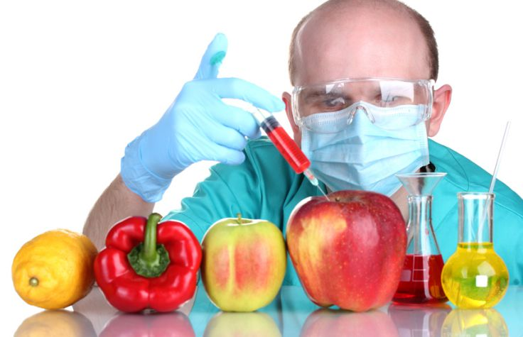 Foods You Should Never Eat - GMOs