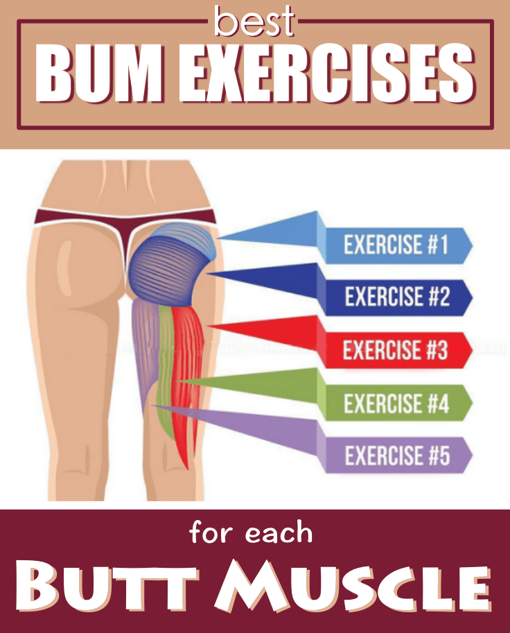 Exercises For Butt Muscles 65
