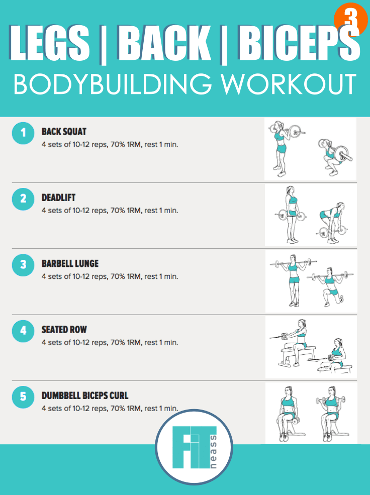 Bodybuilding Workout - Day 3
