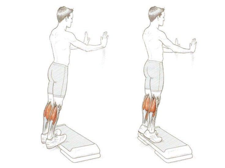 Double Leg Calf Raises