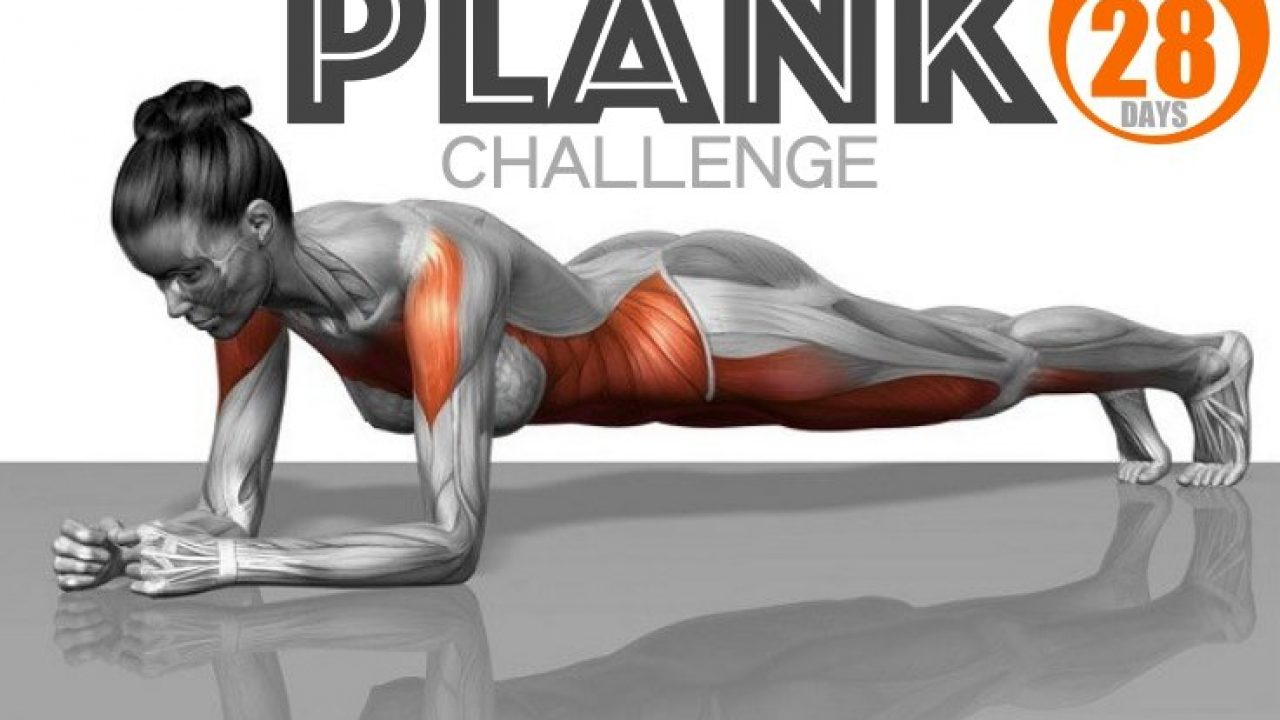 28-Day Plank Challenge To A Completely New Body - Fitneass