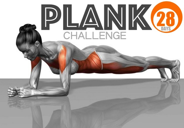 28 day plank challenge to a completely new body fitneass