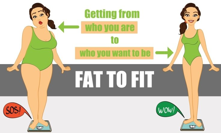fat or fit Fat fit go offers a simple way to get the right type of energy to body and brain  nutrient dense ingredients blended and available as an anytime energy boost,.
