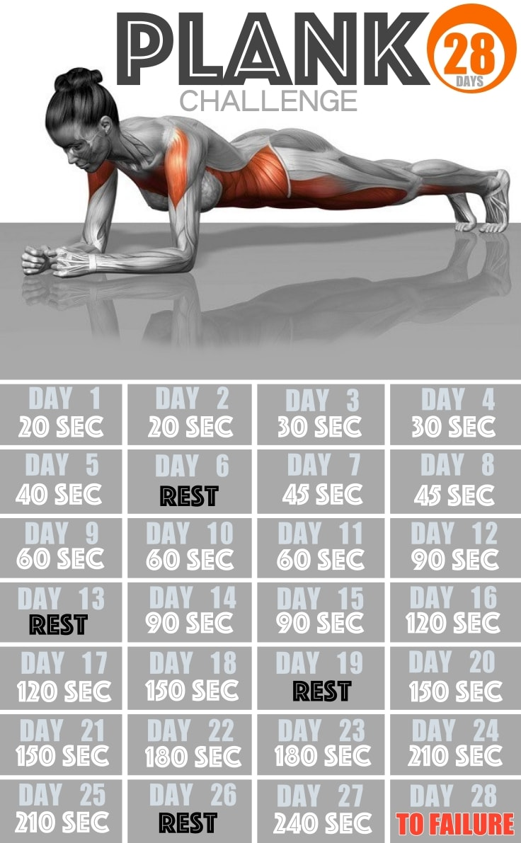 photo relating to Printable Plank Challenge identified as 28-Working day Plank Problem Towards A Thoroughly Fresh Physique - Fitne