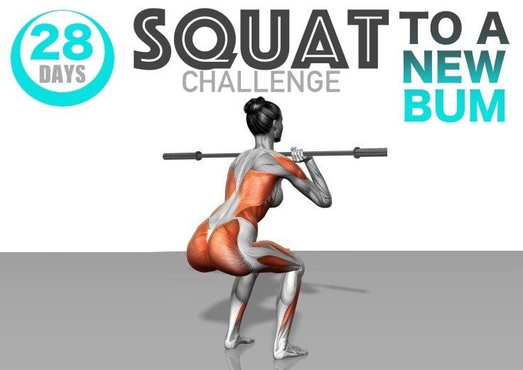 28-Day Squat Challenge