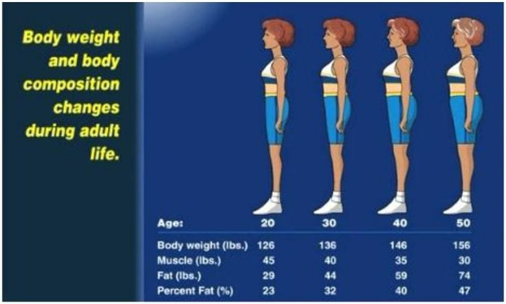 Muscle Loss With Age