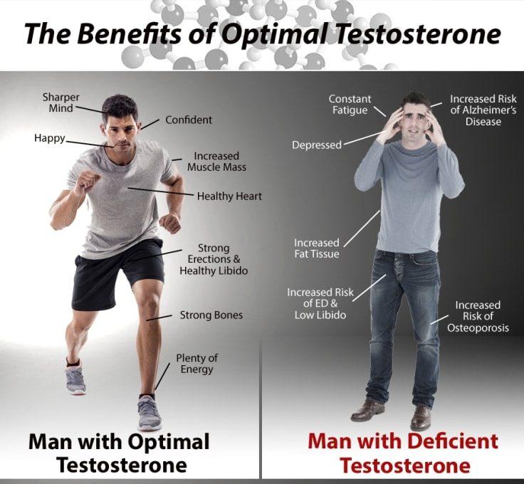 Testosterone Benefits