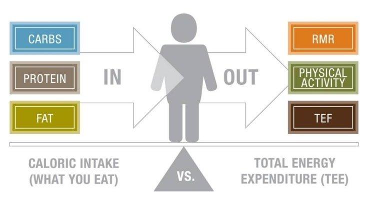 Calorie Balance
