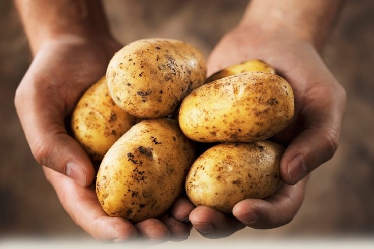 Appetite Suppressant Foods - Potatoes