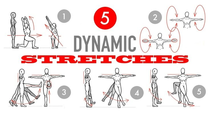 Dynamic Stretching Before Exercising