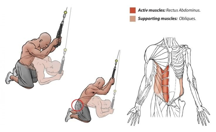 Abs Workout - Kneeling Cable Crunch