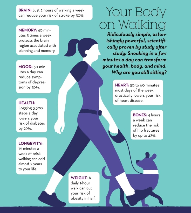 Get Fit For Free In College - Walking