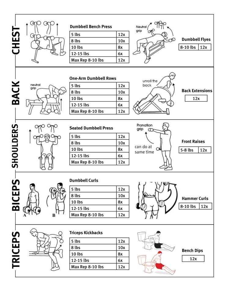 Upper Body Gym Workout Routine