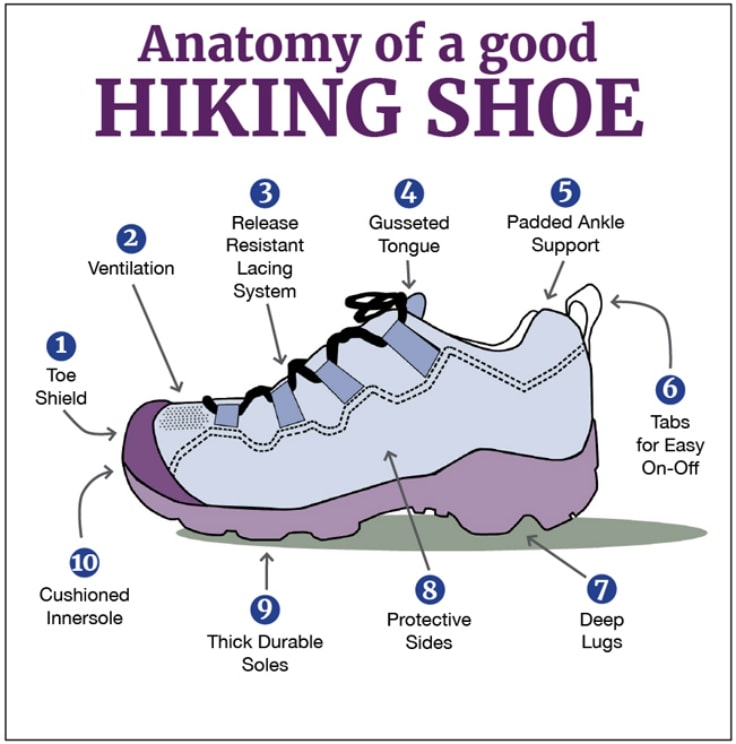 The Anatomy Of A Good Hiking Shoe