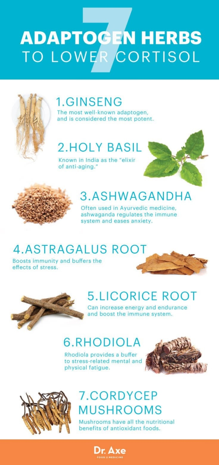 7 Herbs That Help Reduce Cortisol