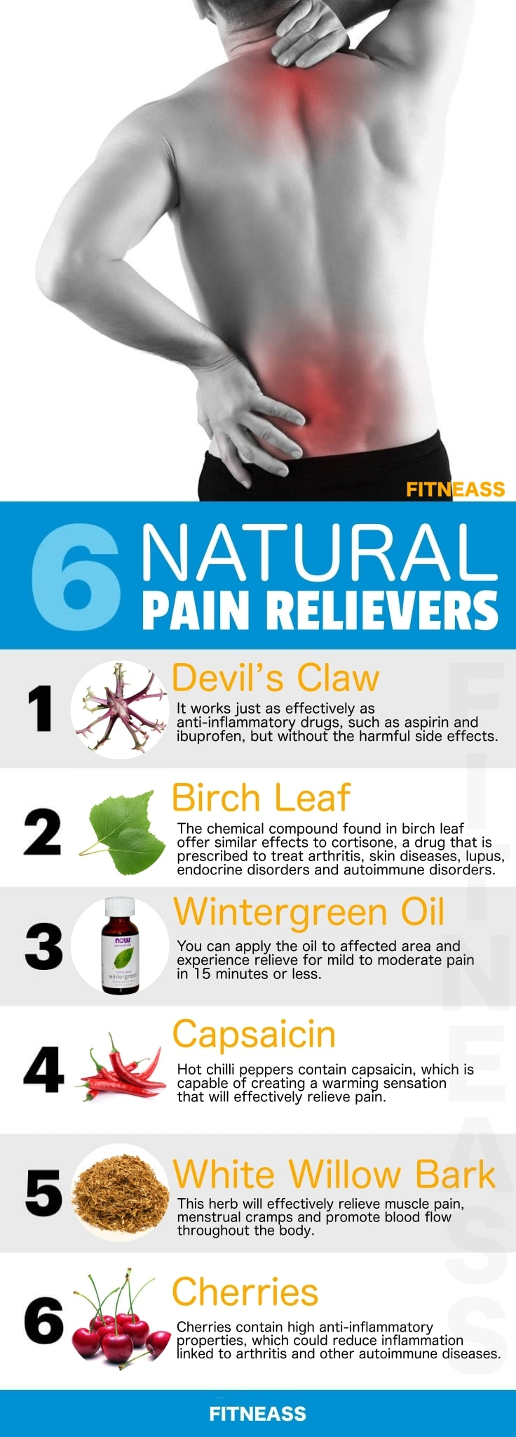 Natural Pain Relievers Infographic