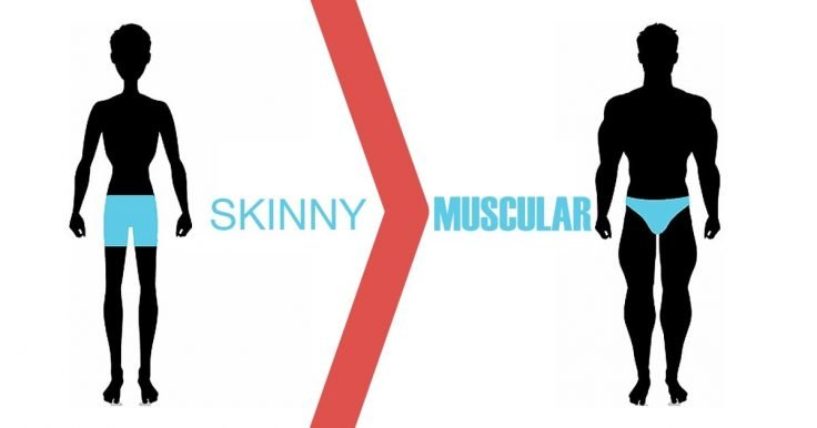 10 Muscle Building Tips For Skinny Guys