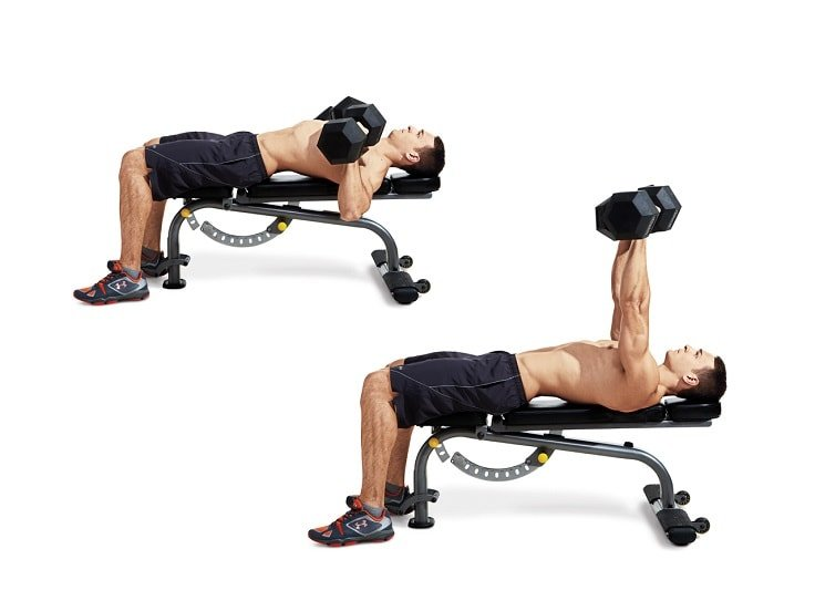Barbell Bench Press - Dumbbell Bench Press