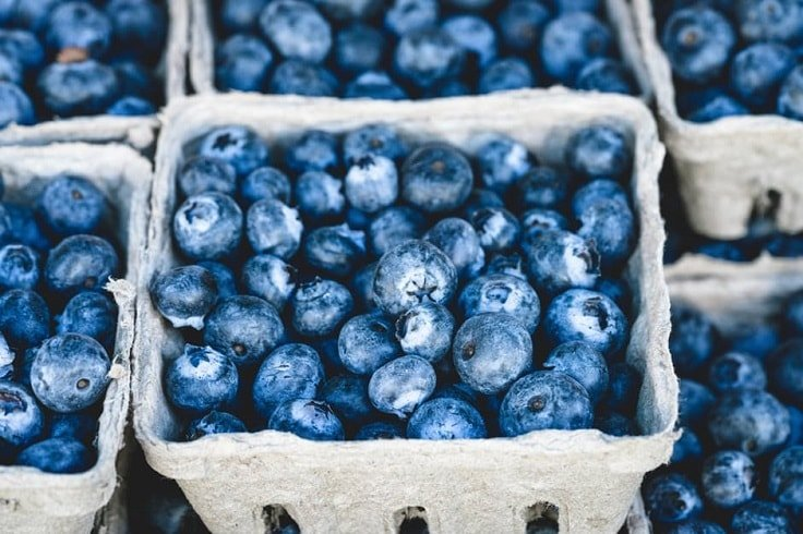 Burn Fat Fast - Blueberries