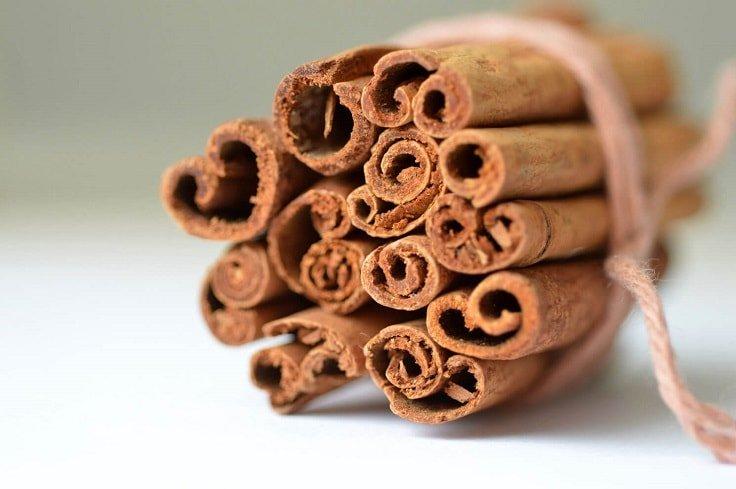 Burn Fat Fast - Cinnamon