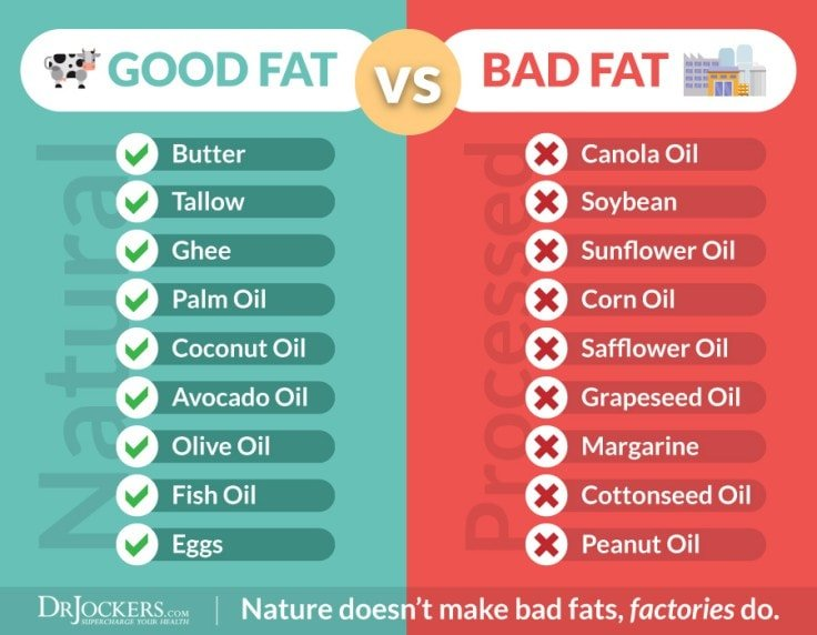 Good vs Bad Fats