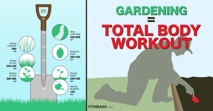 Gardening Is A Total Body Workout