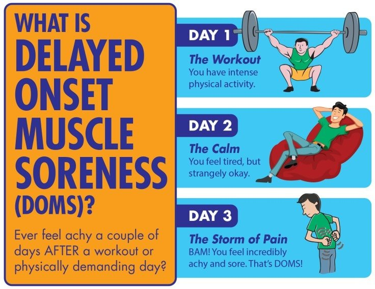 Reasons Why Your Workout Hurts - DOMS