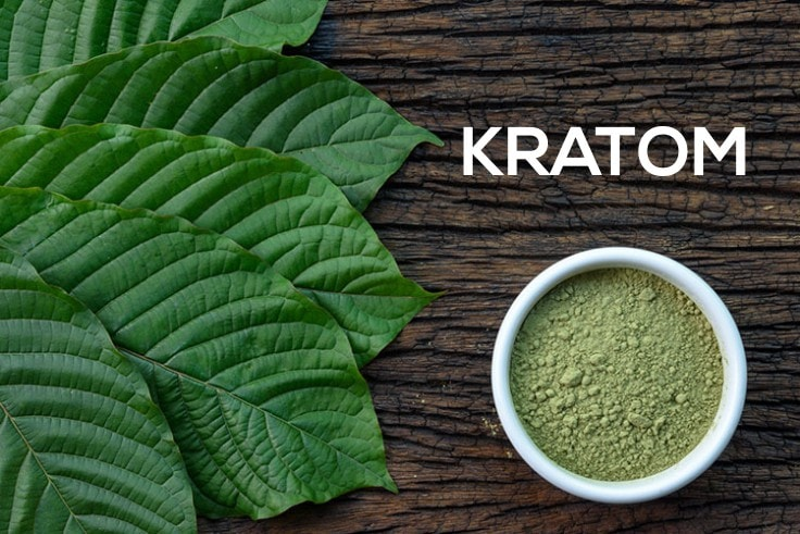 Benefits And Side Effects Of The Herbal Plant Kratom